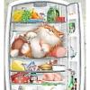 Рейтинг лучших холодильников: отзывы, новинки, сравнение систем заморозки и компрессоров